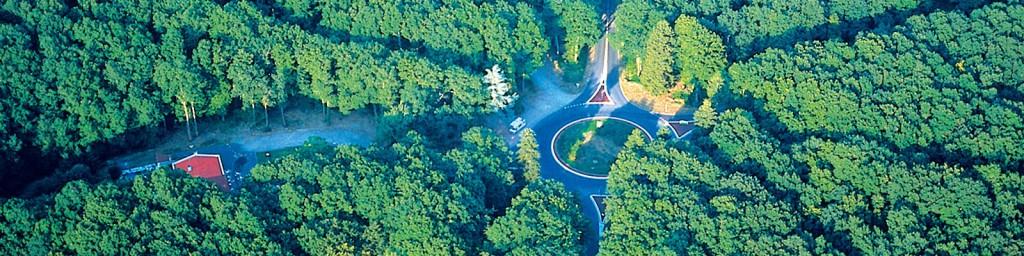 La Forêt de Tronçais © F. Lechenet